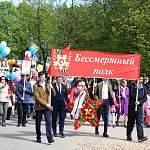 Видео жителей Новгородской области: «Бессмертный полк» в районах