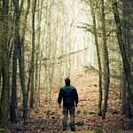 В солецком лесу пройдут поиски мужчины с татуировкой дракона. Нужны добровольцы