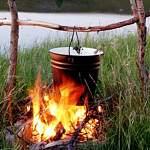 Рыбак из Ленобласти нечаянно спалил любытинский лес