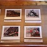 В Музее-усадьбе полководца Суворова открылась выставка военных открыток