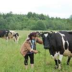 У фермеров Новгородской области могут получить «Агростартап»