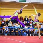 В Великий Новгород съедется элита мировой акробатики