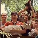 Поклонники «Сватов» раскрыли секрет популярности сериала