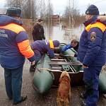 МЧС: «Уровень воды в затопленных районах Новгородской области падает»