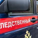 Следком: в Боровичах следователи выясняют обстоятельства гибели детей