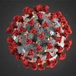 Роспотребнадзор рекомендует не выезжать за пределы России из-за коронавируса
