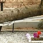 На Западном кладбище Великого Новгорода ураган повалил деревья на могилы