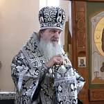 Православный епископ-вирусолог ответил на возмущенные комментарии верующих про коронавирусные запреты