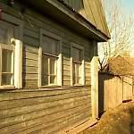 Земельные споры урегулируют, чтобы новгородцы больше не спиливали по полкроны c дерева соседа