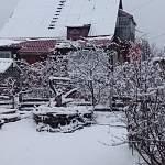 Фотофакт: в Новгородскую область неожиданно вернулась снежная зима