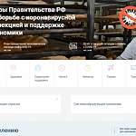 Правительство РФ открыло портал с информацией о поддержке граждан и бизнеса во время пандемии