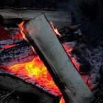 Двое жителей Боровичей пожарили шашлыки в центре Санкт-Петербурга и оказались в полиции