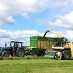 Аграрии Новгородской области получили 116 млн рублей