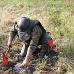 Под Старой Руссой сапёры обезвредили противотанковое минное поле