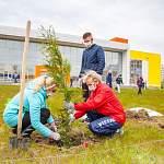 Новгородцы посадили деревья у нового спорткомплекса на Псковской