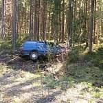 В течение дня в Новгородском районе были сбиты лось и мотоциклист