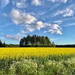 Открылась виртуальная фотовыставка пейзажей депутата областной Думы Анатолия Федотова