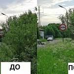 Муниципальные власти Новгородской области решили ряд проблем после жалоб в соцсетях