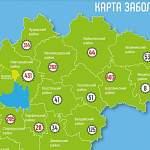 В Великом Новгороде, Боровичском и Чудовском районах зарегистрировано за сутки больше всего случаев COVID-19