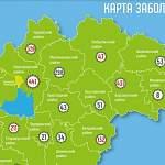 В Новгородской области новые случаи COVID-19 за сутки зарегистрированы в девяти муниципалитетах