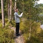 В Новгородской области обустраивают туристическую тропу вдоль уникальных карстовых озер