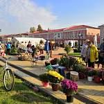 Ярмарка в Старой Руссе порадовала гостей богатым ассортиментом сельхозпродукции