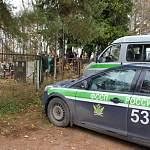 Злостного алиментщика из Окуловского района приставы доставили в суд… с кладбища