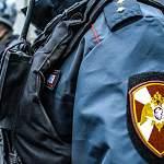 В Великом Новгороде сотрудники Росгвардии задержали необычного магазинного вора