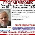 В Великом Новгороде идут поиски 90-летнего дедушки