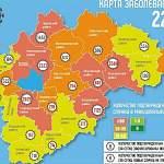 В Новгородской области новые случаи COVID-19 зарегистрированы в 13 муниципалитетах