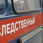 Следком выясняет обстоятельства ДТП со школьным автобусом в Новгородском районе