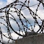 В Великом Новгороде вымогавший у подчинённых деньги сотрудник ФСИН получил условный срок