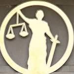 В Новгородской области мужчина предстанет перед судом за воровство и жестокое убийство