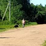 В июне в Великом Новгороде выберут победителей ветеранского фестиваля скандинавской ходьбы