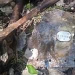 Демянские поисковики устанавливают имена лётчиков найденного в лесу бомбардировщика